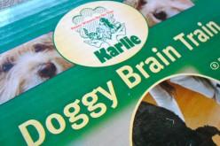 Concours – Gagnez pour votre chien