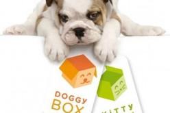 Les Box Canines