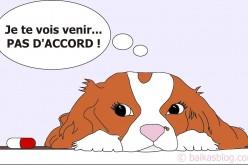 Donner un médicament au chien