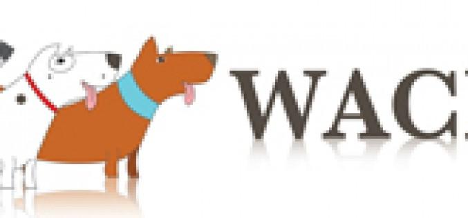 Wacky walk'r laisse élastique
