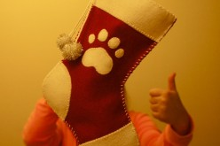 Chaussette de Noël pour chien