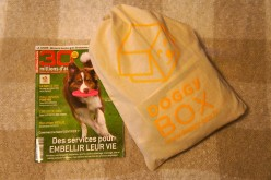 La Doggy Box de novembre