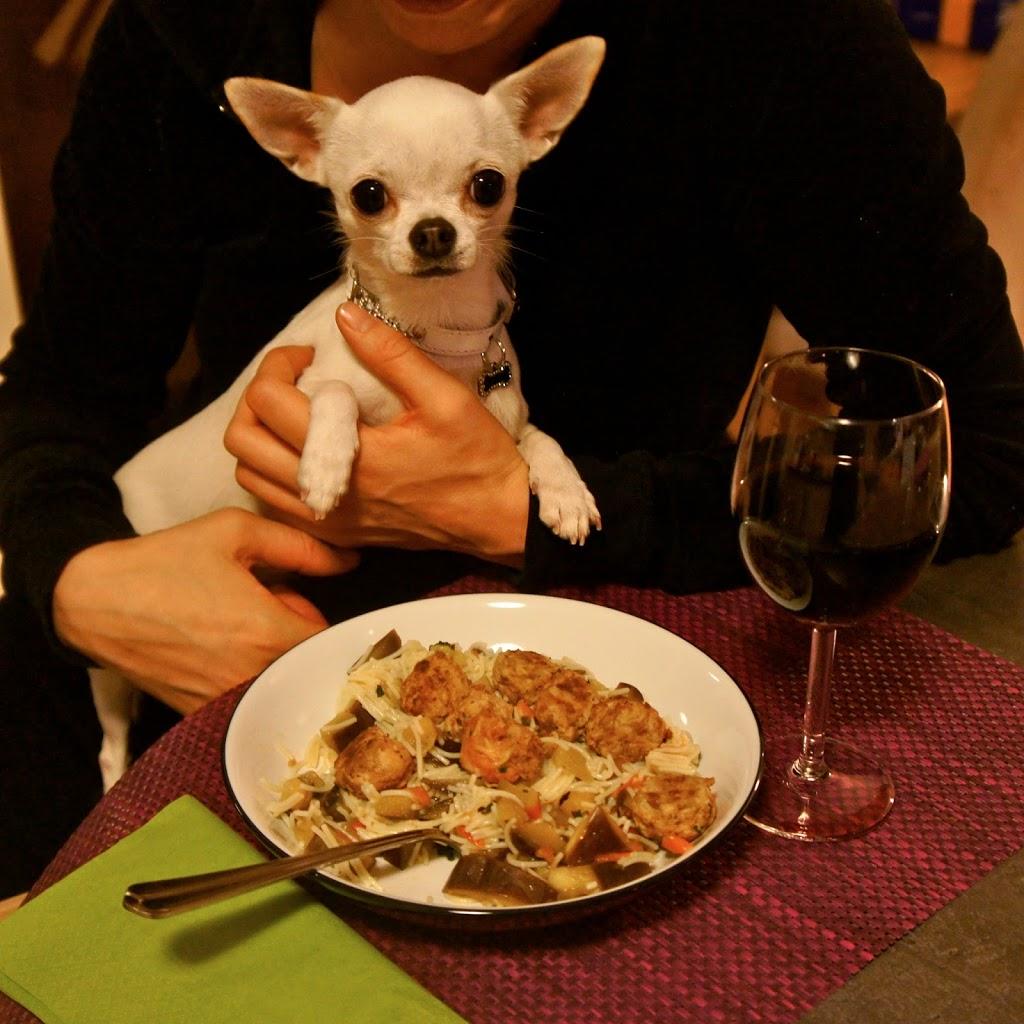"""Résultat de recherche d'images pour """"repas du chien"""""""
