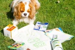 La DoggyBox Bien-être