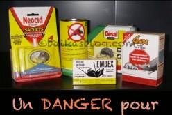 Les dangers de la mort-aux-rats pour les chiens