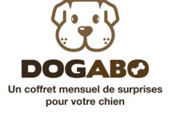 Dogabo : la box suisse pour votre chien