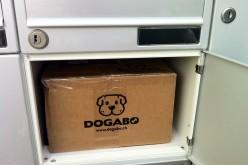 La première box Dogabo