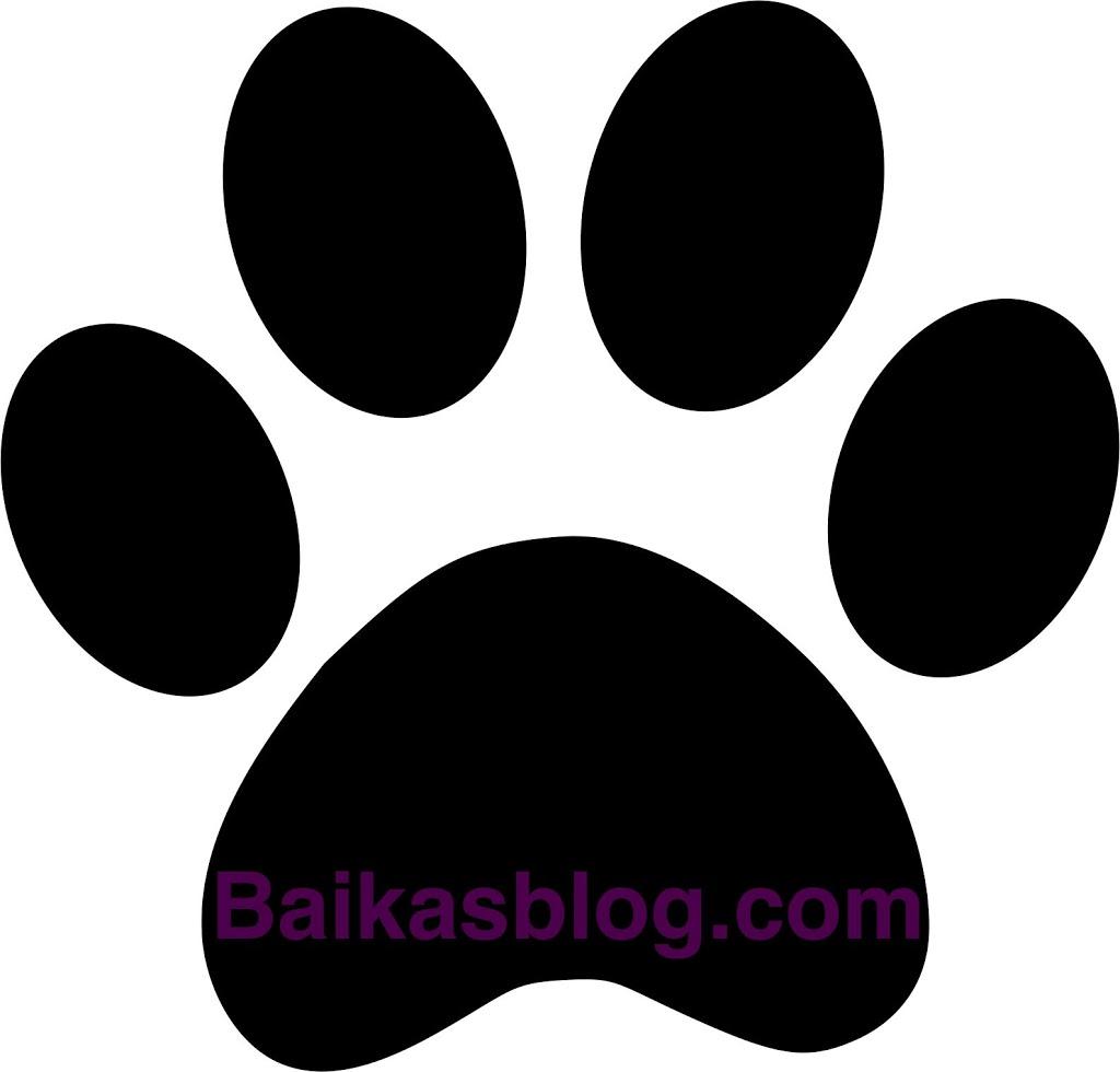 Tutoriel pochoir pattes de chien baikasblog - Image patte de chien gratuite ...