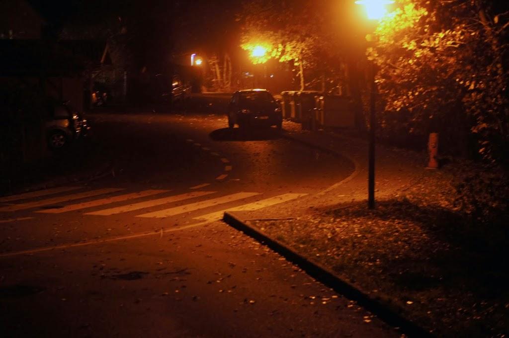 Sécurité du soir pour mieux promener son chien dans le