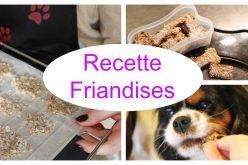 Recette pour chien – Biscuits Poulet Avoine   Recette facile de friandises pour chien