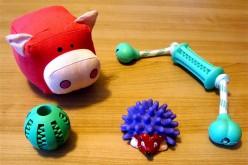 Vétérinaire et jouets