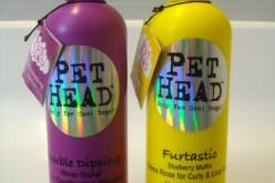 Concours Pet Head