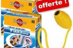 Concours DentaStix