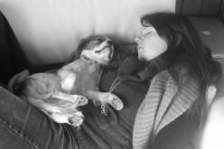 Le temps d'avoir un chien
