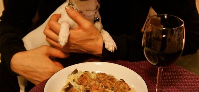 Recettes à partager avec son chien : Boulettes de viande