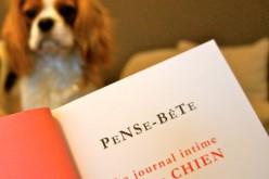 Pense-Bête, le journal intime de votre chien
