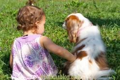 Nos 10 commandements sécurité chien et enfant