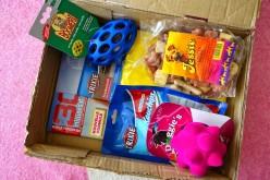 La Woufbox de juillet «Summer box»