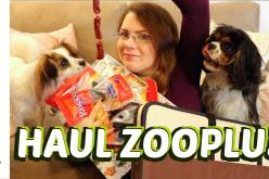 Haul Canin – Commande de friandises et niches pliables sur Zooplus