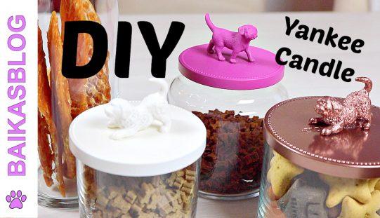 DIY Pots à friandises pour chien – Recyclage de Pots à Bougies Yankee Candle